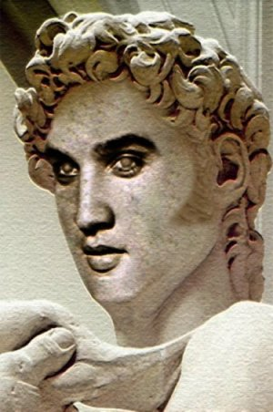 Elvis Archaeological Finds Revealed Elvisblog