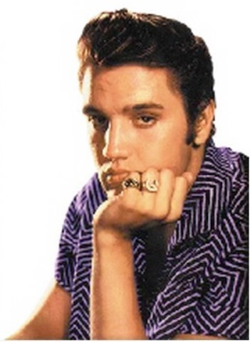 Elvis' Horse head-Horse Shoe Ring - Wearing