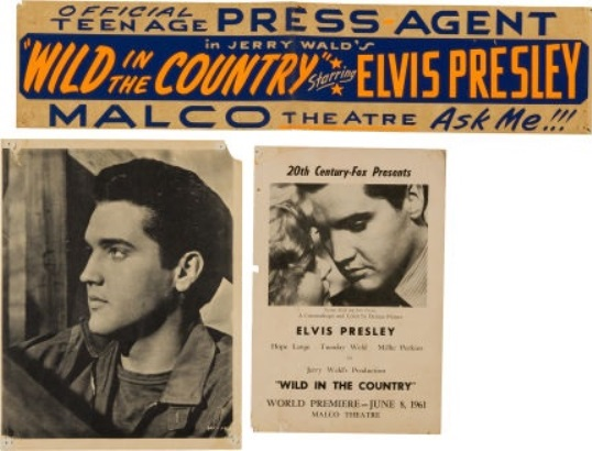 Elvis Wild in the Country Group