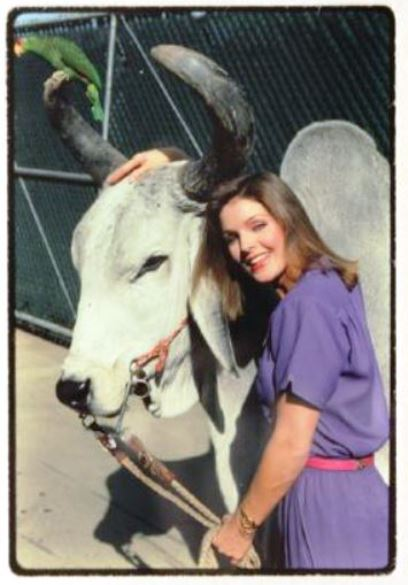 Priscilla Presley and Bull