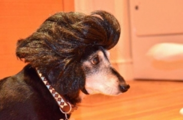 Brown Elvis Wig