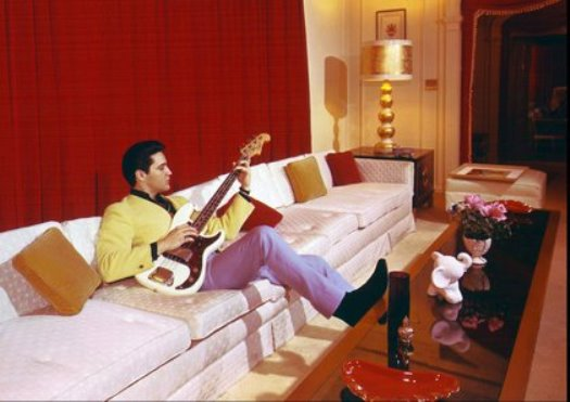 Elvis on Couch in Geaceland Living Room