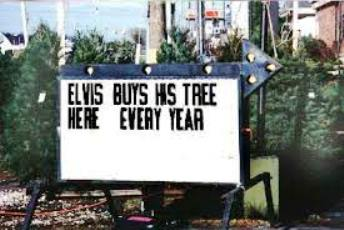 Elvis Buys his Tree Here Every Year