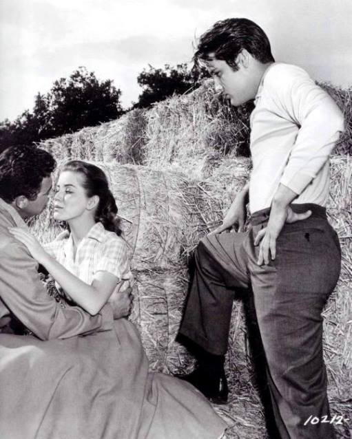 Director Hal Kanter giving Dolores Hart and Elvis Presley instructions on how to do a scene Elvis Forum