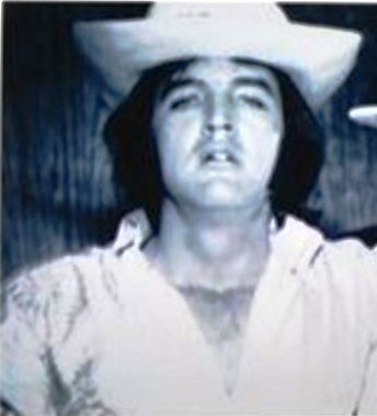 Elvis in Fun Hat