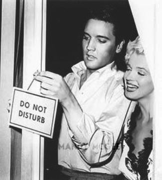 Elvis and Marilyn - Do Not disturb
