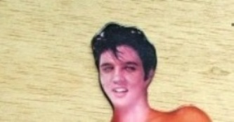 Head of Elvis Magnet