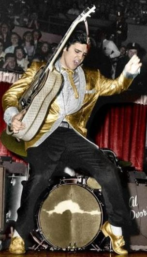 Elvis - contributed an original artistic vision to American culture symbolic of a particular historical moment