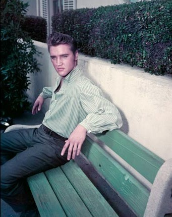 Elvis Seated