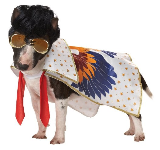 Costume Craze Dog Elvis