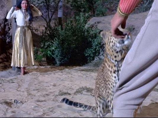 Elvis about to Karate Chop a Tiger in Garum Scarum