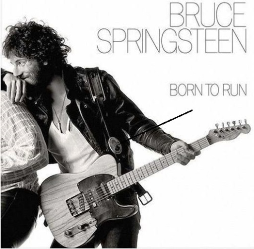 Photoshopped picture of Elvis and Bruce Springsteen early in Their Careers