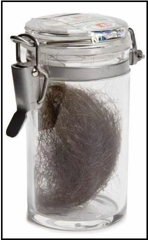 ELVIS PRESLEY VIAL OF HAIR June 2012 Julien's $4,160