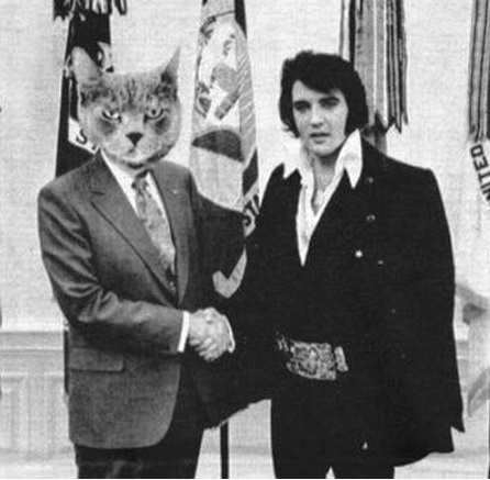 Elvis and Cat in Oval Office